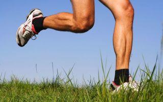 Лошадиная сила для суставов: гель, бальзам, мазь — лечебные свойства