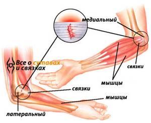 Болезни локтевого сустава: перечень основных и способы лечения