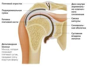Деформирующий артроз плечевого сустава: 1,2,3 степени