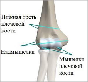 Перелом локтевого сустава: виды, симптомы, диагностика