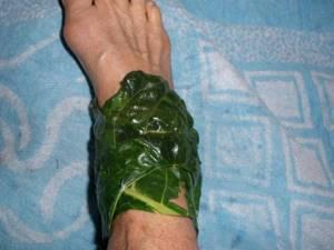 Хрен для лечения суставов: польза и вред. Рецепты, мази, настойки