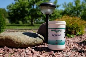 Биологически активные добавки для суставов и связок: список