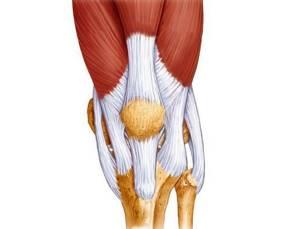 Теносиновит сухожилия: симптомы и лечение