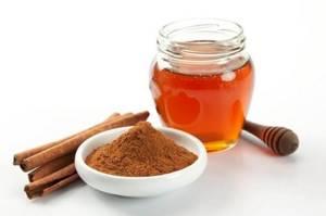 Мед с корицей для суставов: лучшие рецепты народной медицины