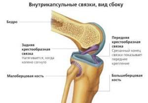 Лигаментоз коленного сустава что это такое лечение