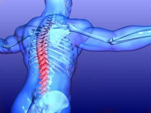 Хондроитин-Акос: капсулы и мазь для лечения суставных патологий
