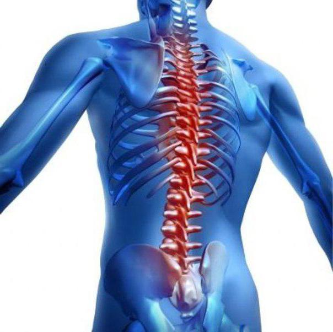 Остеохондроз: что это такое, симптомы, причины и лечение болезни