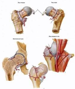 Боль в тазобедренном суставе при ходьбе: лечение, причины боли