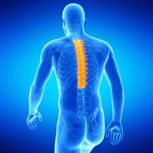 Артроз позвоночника: шейного, грудного и поясничного отдела