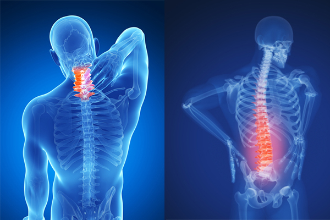 Видео об остеохондрозе позвоночника