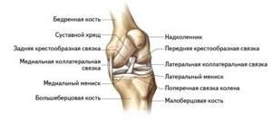 Лигаментит коленного сустава: симптомы и лечение связок