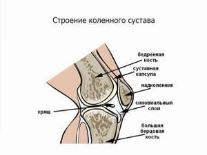 Что делать при ушибе колена?
