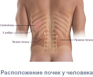 Боль в пояснице: причины, лечение, почему болит поясница, что делать