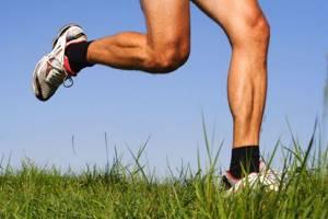 Лошадиная сила для суставов: гель, бальзам, мазь - лечебные свойства