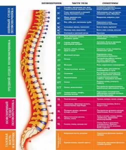 Обезболивающий спрей для суставов: список эффективных лекарств